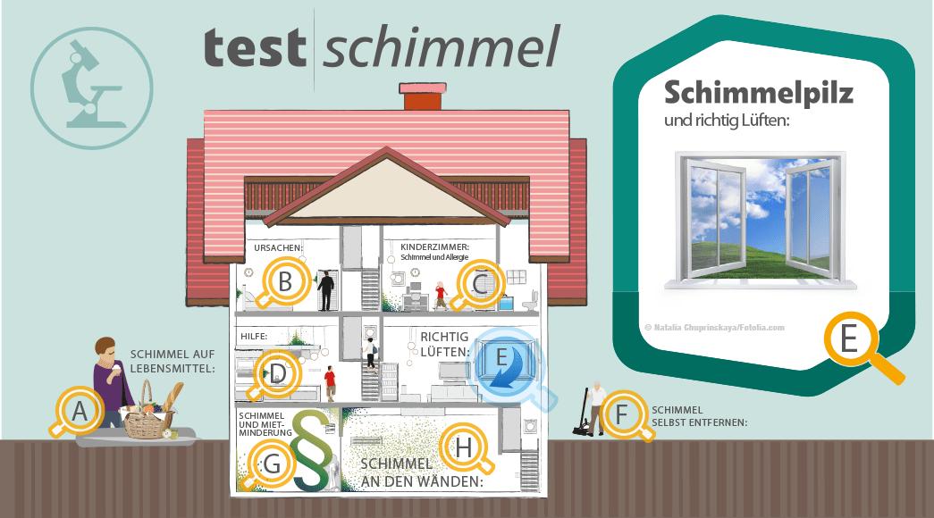 Mietvertrag Vermieter Und Schimmel Schimmelpilz Fachzentrum