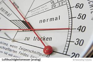 Luftfeuchtigkeitsmesser Hygrometer Gegen Schimmel Schimmelpilz