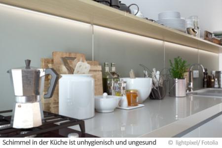 Schimmel in der Küche - Ursache, Vorbeugung, Entfernung